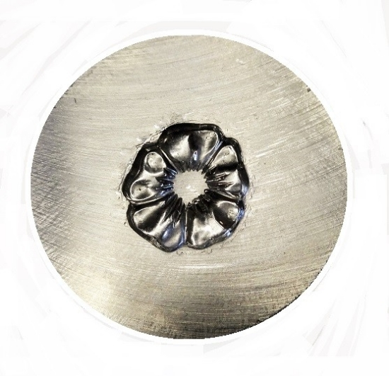 Picture of Shot Plate Frangipani Flower 4