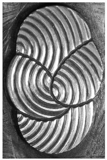 Picture of Impression Die Overlapping Fingerprints