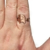 Picture of LAST CALL! Elephant Ring Pancake Die R120